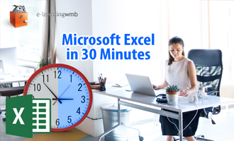 Microsoft Excel in 30 Minutes