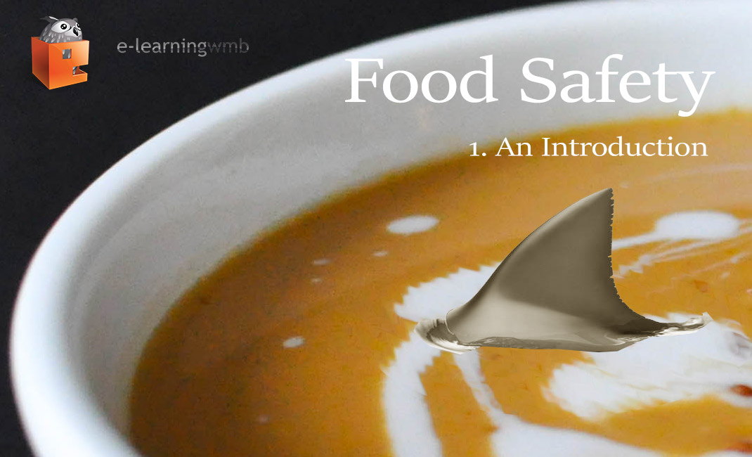 Food Safety - An Introduction