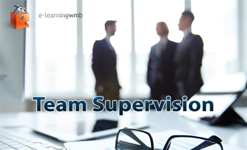 Team Supervision e-Learning