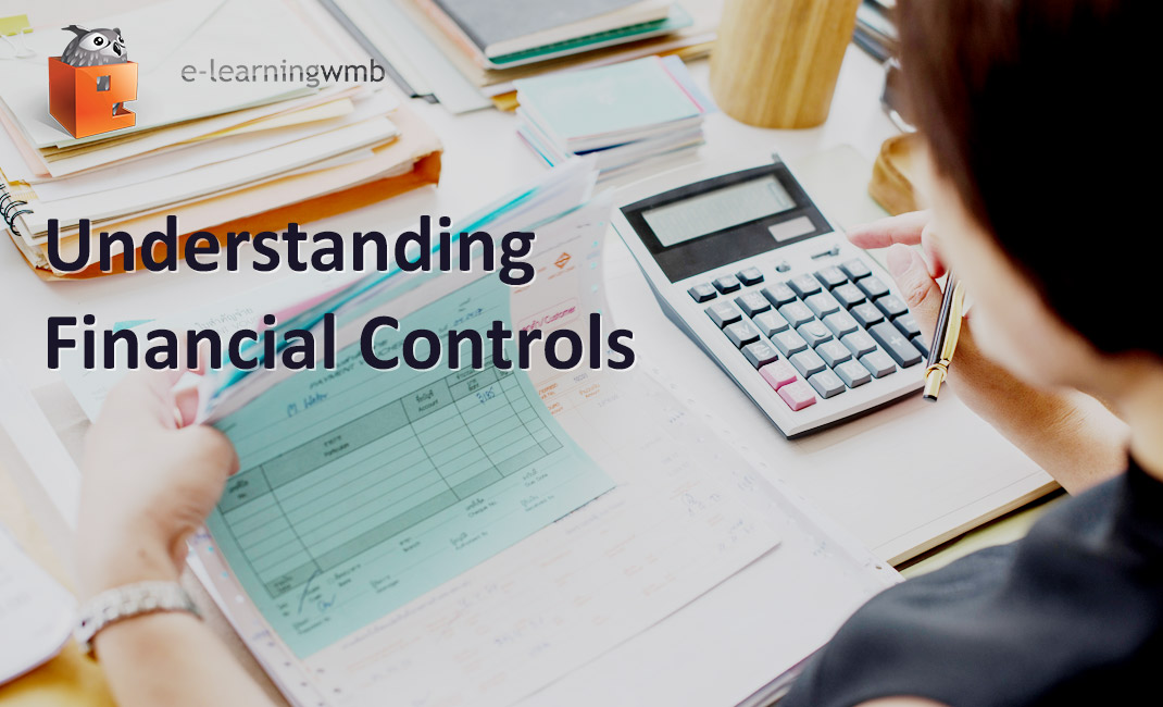 Understanding Financial Controls